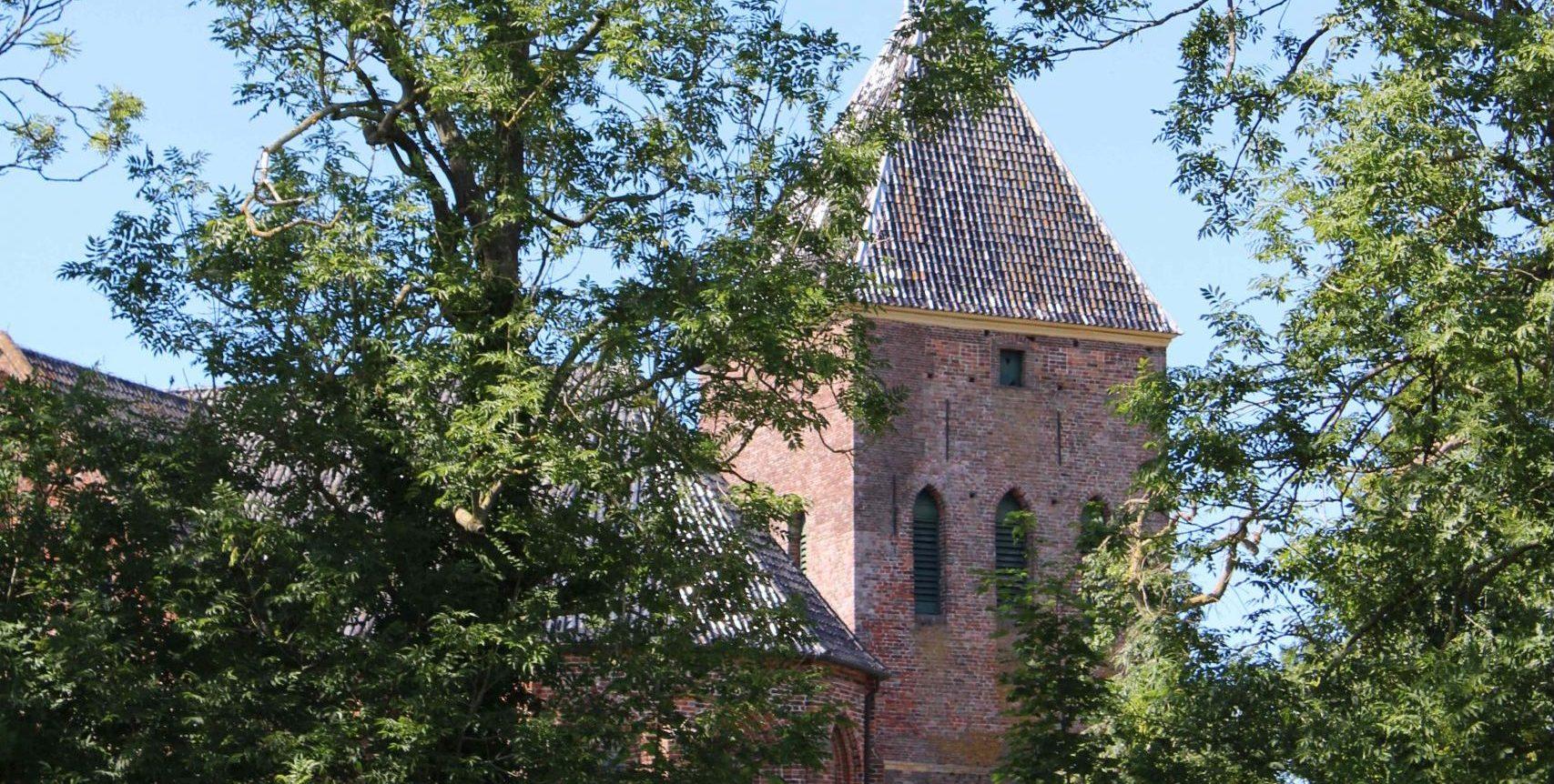 kerk door de bomen